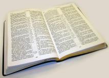БИБЛИЯ КАНОНИЧЕСКАЯ СРЕДНЕГО ФОРМАТА 065. Коричневый, иск. кожа, золотой срез, параллельные места, закладка /230х165/