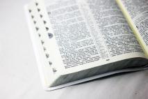 БИБЛИЯ СВАДЕБНАЯ 075 TI Белая, голубой футляр, тиснение, серебро, индексы, закладка /180x252/