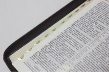 БИБЛИЯ 055 ZTI Коричн. рамка, парал. места, золотой срез, молния, индексы, закладка, словарь /150х205/