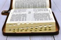 БИБЛИЯ КАНОНИЧЕСКАЯ РУЧНОЙ РАБОТЫ. Коричневый цвет, натуральная кожа, кнопка, молния, индексы, золотой обрез, держатель для ручки, 3 закладки /145х205/