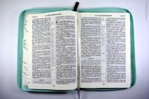 БИБЛИЯ 055 ZTI Светло-зеленая, пионы, парал. места, на срезе узор (листья), индексы /145x205/