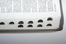 БИБЛИЯ 075 ZTI Торжество, серая, термовинил, молния, сер. обрез, индексы, 2 закладки /240x180/