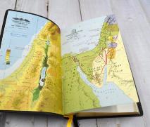 БИБЛИЯ 052 (Е10) Желтый, солнце, золотой обрез, две закладки /120х190/
