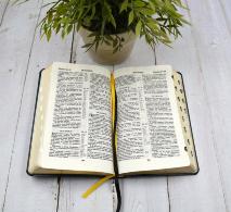БИБЛИЯ 057 TI (С11) Светло-коричневый, солнце, индексы, золотистый обрез, две закладки /120х190/