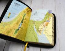БИБЛИЯ 057 ZTI (B9) Зеленый, солнце, кожа, молния, индексы, золотистый обрез, две закладки /120х190/