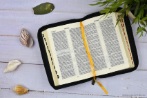 БИБЛИЯ 047 ZTI Терновый венец, крест, белый цвет, кожаный переплет, молния, зол. обрез, индексы, две закладки /120х180/