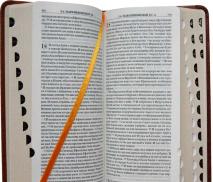 БИБЛИЯ 045 YTIDT Коричневый/светло-коричневый цвет, индексы, экокожа, золотой срез, закладка, словарь /185х95/