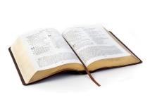 БИБЛИЯ В СОВРЕМЕННОМ ПЕРЕВОДЕ под ред. М.П. Кулакова /гибкий переплет, рыжий термовинил, золотистый обрез/