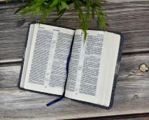 БИБЛИЯ 045 TW Синий бисер, вставка, серебрянный срез, закладка /120х165/