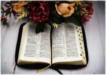 БИБЛИЯ 057 ZTI (B10) Белый, сердце, кожа, молния, индексы, золотистый обрез, две закладки /120х190/