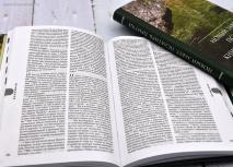 НОВЫЙ ЗАВЕТ. Псалтирь. Книга Притчей. Синодальный перевод