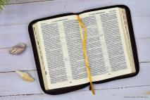 БИБЛИЯ 077 ZTI Вишневый цвет, узор, кожа, молния, зол. обрез, индексы, две закладки, парал. места, словарь /170х240/