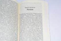 БИБЛИЯ 041 Y Бордовая. Современный русский перевод /85х185/
