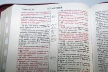 БИБЛИЯ 075 ZTI Терновый венец, винная, термовинил, молния, золотой обрез, индексы, закладки /240х180/