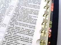 БИБЛИЯ 055 ZTI Синяя, красные цветы, парал. места, золотой срез, индексы, словарь /145x205/