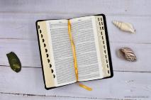 БИБЛИЯ 045 YTIB Черный, индексы, экокожа, золотой срез, закладка, словарь /185х95/