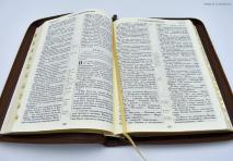 БИБЛИЯ 077 ZTI Коричневая, рамка, золотой срез, индексы, молния, закладка /180х255/
