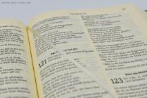 DIE GUTE NACHRICHT. Библия на немецком языке